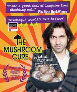 The Mushroom Cure Poster